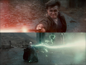 Harrypotter7_04